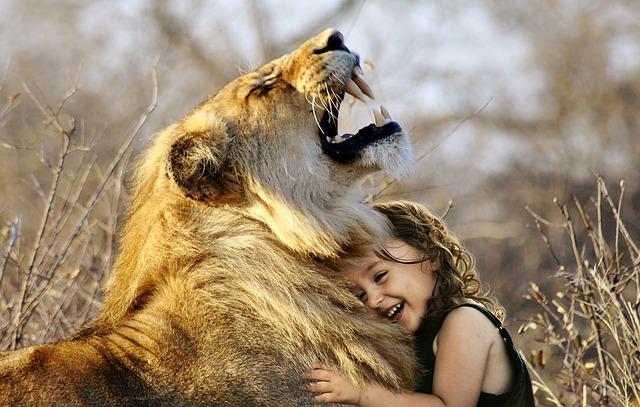 holčička s lvicí